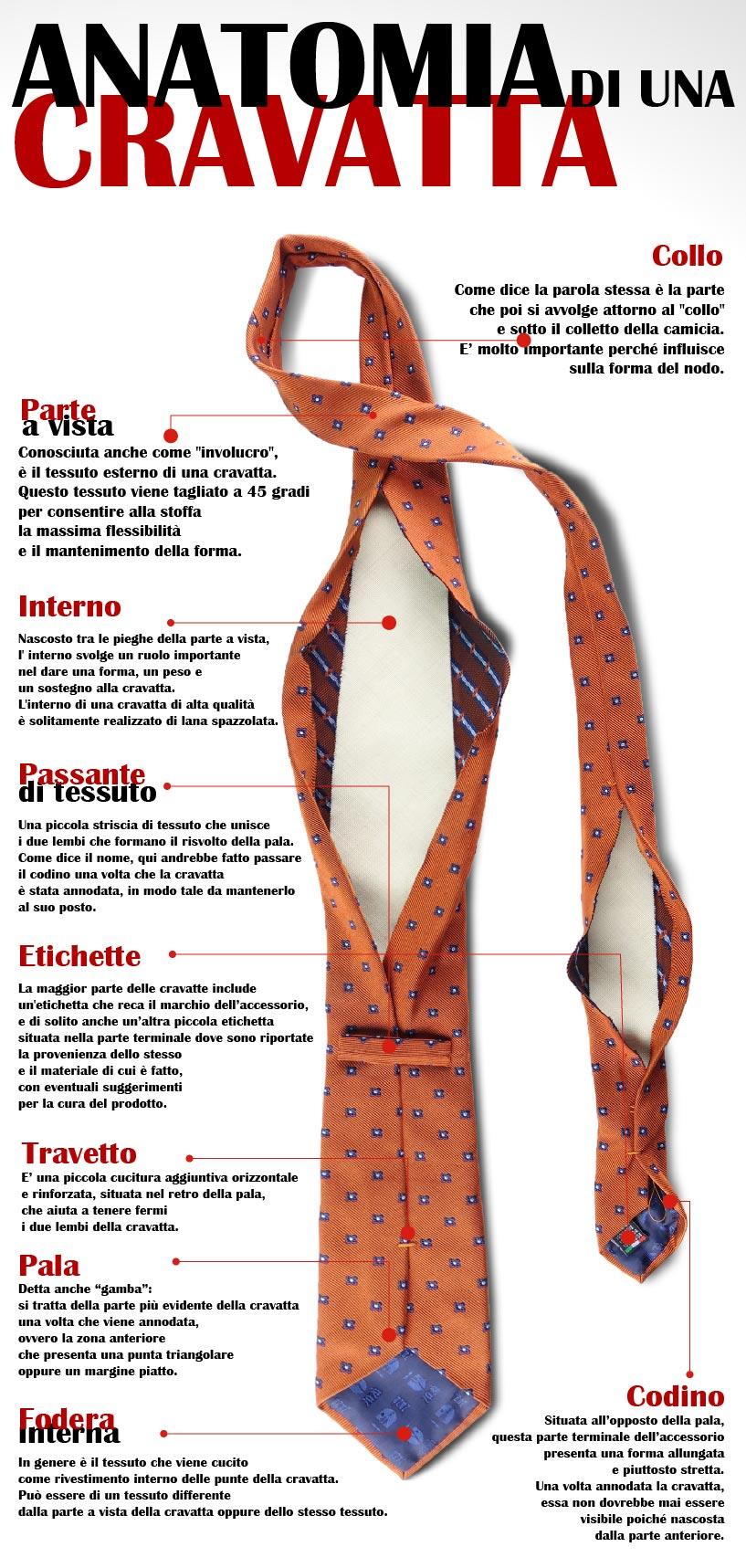 anatomia della cravatta