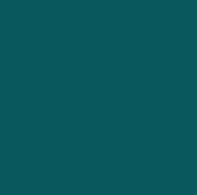 Shaded Spruce Pantone 2017