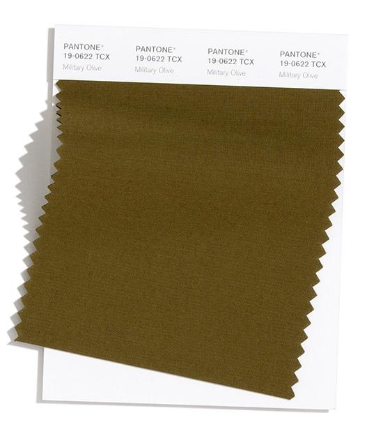 Military Olive Pantone 2020