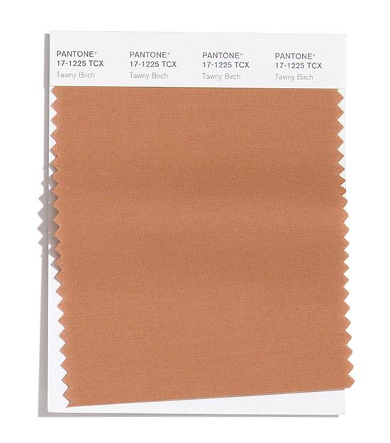 Tawny Birch Pantone 2020